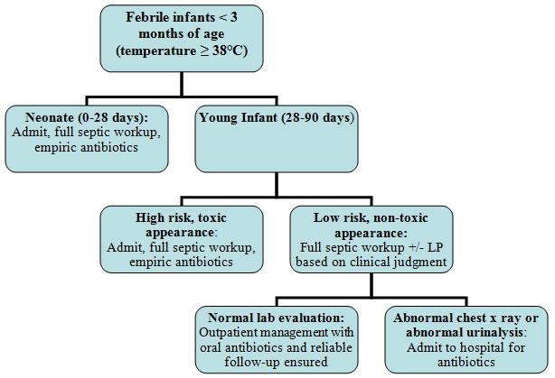 Fever in the Newborn Period | Learn Pediatrics